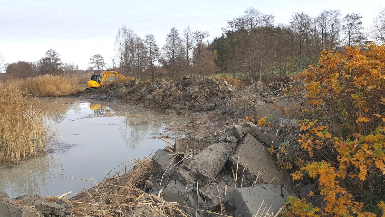 Gräv och trädfällning i Lekeberg - trädfällning lekeberg